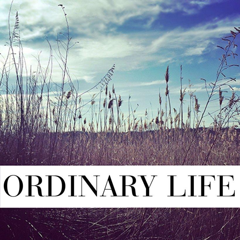 vita-ordinaria